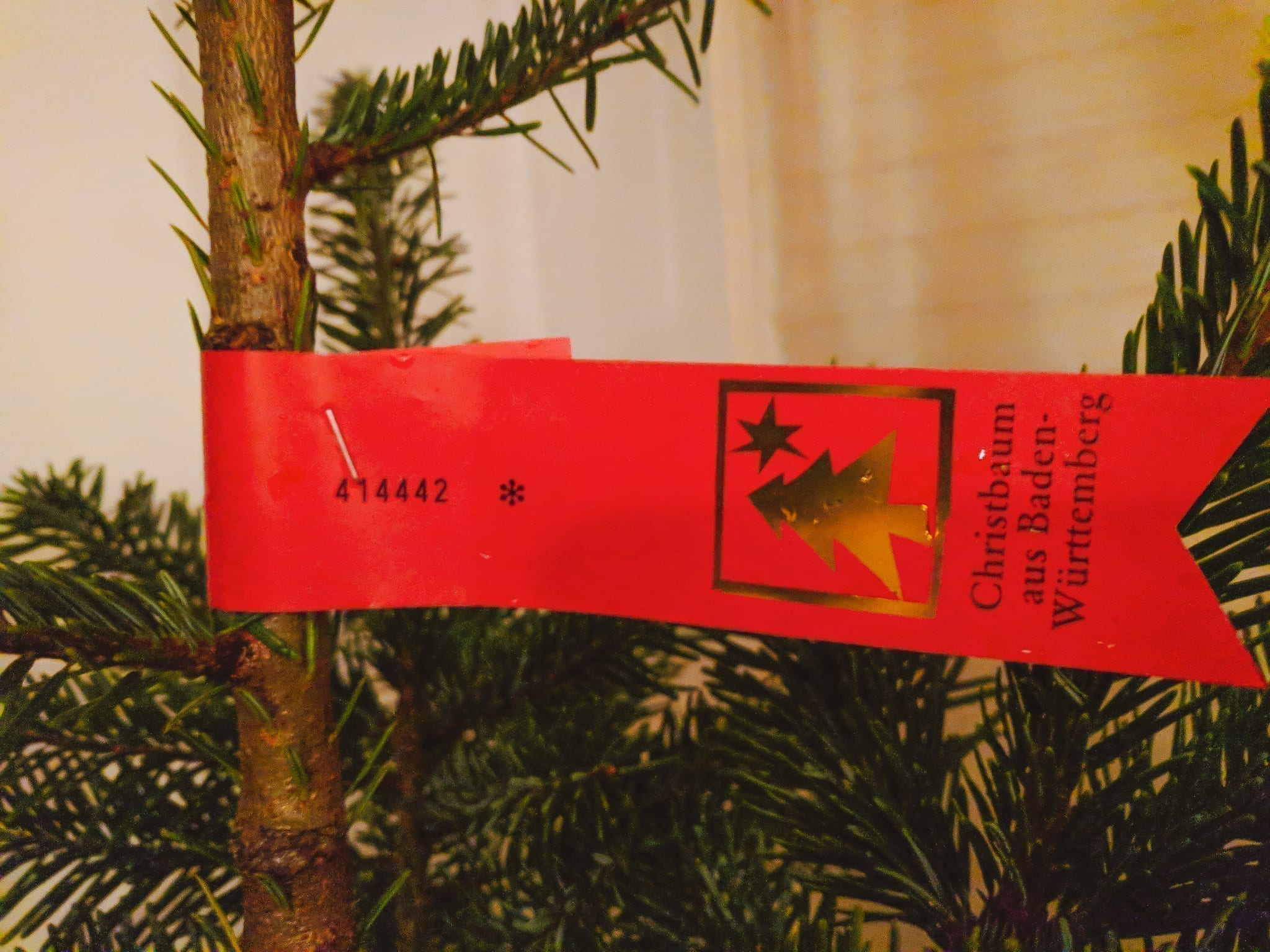 A Christmas tree in Germany with a sign that says